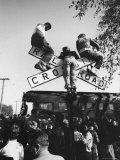 Kids Hanging on Crossbars of Railroad Crossing Signal to See and Hear Richard M. Nixon Speak Fotografie-Druck von Carl Mydans