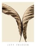 Studio con foglie II Stampe di Jeff Friesen