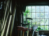 Potting Shed, Inside View of Tools, Apple Tree Cottage, Wales Photographic Print by Sunniva Harte