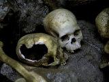 Skulls and Bone, Indonesia Lámina fotográfica por Michael Brown