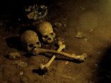 Skull and Cross Bones Lámina fotográfica por Michael Brown