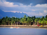 Palms and Beach, Sheraton Royale Hotel, Fiji Fotografisk tryk af Peter Hendrie