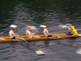 Rowing Shell in Montlake Cut, Seattle, Washington, USA Reproduction photographique par Stuart Westmoreland