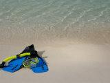 Blue Snorkeling Gear, Renaissance Island, Aruba, Caribbean Fotografie-Druck von Lisa S. Engelbrecht