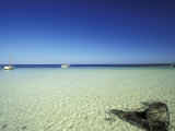 Broken Fishing Net and Clear Waters, Tunisia Photographic Print by Michele Molinari
