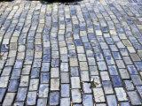 Cobblestone Street, Small Stone as Ballast on Spaniards Galleons, Puerto Rico Photographic Print by Michele Molinari