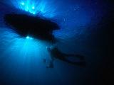 Diver Underneath Boat with Sunlight, Leigh, New Zealand Lámina fotográfica por Jenny & Tony Enderby