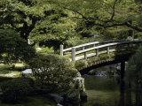 Imperial Palace, Gardens, Tokyo, Japan Lámina fotográfica