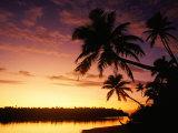 Coconut Palms Over Aitutaki Lagoon, Aitutaki, Southern Group, Cook Islands Reproduction photographique par John Banagan