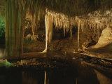 Cave Interior, Coastal Australia Fotografisk tryk af Sam Abell