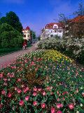 Spring Flowers in Angelholm City Park, Angelholm, Skane, Sweden Reproduction photographique par Anders Blomqvist