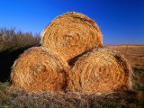 Three Hay Bales on Farm in Red River Valley, Alberta, Canada Photographic Print by Barnett Ross