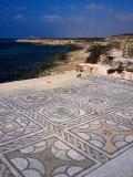 The Wonderfully Intact Byzantine Mosaics of the Roman Baths at Sabratha, Sabratha, Libya Lámina fotográfica por Patrick Syder