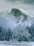 A Winter View of Half Dome Photographic Print by Marc Moritsch