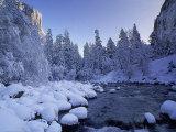 Fresh Snow Fallen on Trees Near Stream Photographic Print by Kyle Krause