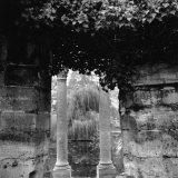 Columns and Pond with Tree, Paris, France Fotografisk trykk av Ellen Kamp