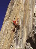 El Capitan, Yosemite National Park, California, USA Fotografie-Druck