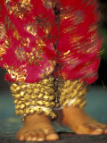 Indian Cultural Dances, Port of Spain, Trinidad, Caribbean Fotografisk trykk av Greg Johnston