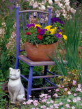Mixed Flowers and Old Chair, Seattle, Washington, USA Photographic Print by Terry Eggers