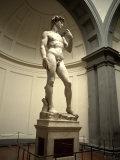 Michelangelo's Sculpture of David, Florence, Italy Fotografie-Druck von Bill Bachmann