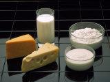 Dairy Products Fotografisk tryk af David M. Dennis