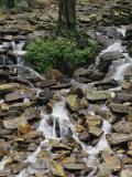 Water Flows Down a Rocky Hillside in Caldenonia State Park, Pennsylvania Photographic Print by Sam Abell