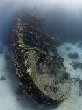 Tug Tien Sing, Red Sea Fotografisk trykk av Mark Webster
