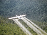 A Forest Service Plane Drops Fire Retardant on the Forest Below Photographic Print by J. Baylor Roberts