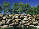 Stone Wall with Trees in the Background Reproduction photographique par Amy & Al White & Petteway