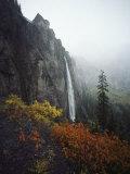 Bridal Veil Falls Plummets Down a Rock Cliff Near Telluride Fotografisk tryk af Paul Chesley