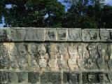 Wall of Skulls (Known as Tzompantli), Chichen Itza, Mexico Lámina fotográfica por Winter, Steve