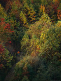 Cyclist Rides Through Fall Foliage in West Virginia Reproduction photographique par Skip Brown