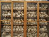 Human Skulls and Femurs Fill a Display Case at Nea Moni Monastery Lámina fotográfica por Soriano, Tino