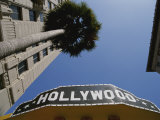 A Tour Bus Sign and a Palm Tree Scream out Hollywood Fotografisk trykk av Stephen St. John