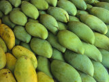 Mangoes Sold at a Market Photographic Print by Todd Gipstein