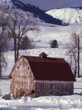 Barn in Winter, Methow Valley, Washington, USA Fotoprint av William Sutton
