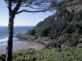 View from Interpretive Center, Cape Cove, Cape Perpetua Scenic Area, Oregon, USA Photographic Print by Connie Ricca