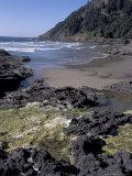 Yachats, Cape Cove, Cape Perpetua Scenic Area, Oregon, USA Photographic Print by Connie Ricca