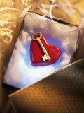 Key on Red Heart in Golden Box with Ribbon Fotografisk trykk av Ellen Kamp