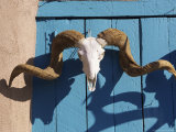 Ram's Head on Blue Door, New Mexico Fotografie-Druck von Alan Veldenzer