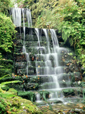 Tiered Waterfall, Moss, Lichen, Ferns Photographic Print by Ron Evans