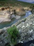 Fango River Gorge, La Corse, France Fotoprint av Olaf Broders