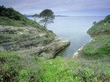 Corsican Bay, La Corse, France Reproduction photographique par Olaf Broders