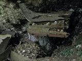 Skulls and Boat Remains, Indonesia Lámina fotográfica por Michael Brown