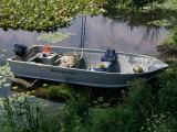 A Dog in a Boat on a Pond Lámina fotográfica