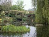 Home and Garden of Claude Monet, Giverny, France Lámina fotográfica