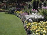 Flower Garden Lámina fotográfica