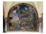 The Nativity, 1460-62 Giclée-tryk af Alesso Baldovinetti