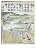 Harvest, the Rice Culture in China Gicléedruk