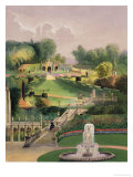 The Garden on the Hill Side, Castle Combe, from 'The Garden's of England', Published 1857 Giclee Print by E. Adveno Brooke